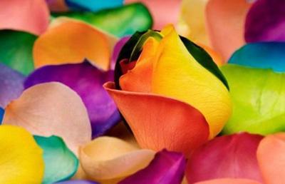 اعجاز رنگها
