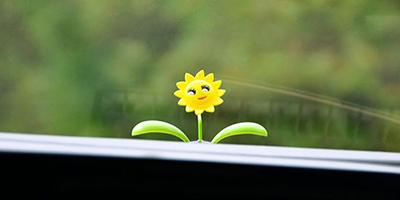 شادی در زندگی