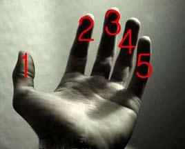 کودوم انگشتو بیشتر دوس داری؟؟؟؟؟؟؟ 1