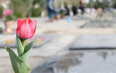 در خواندن فاتحه برای اموات چه سورههایی را باید خواند؟