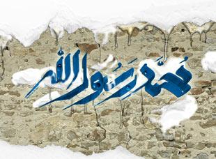 ولادت پیامبر اکرم(ص),چگونگی ولادت پیامبر اکرم(ص),تولد حضرت محمد(ص)