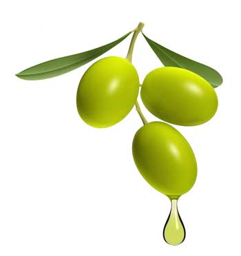 گیاهانی که در قرآن از آن یاد شده