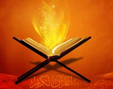 نجات یافته از حادثه دنیا,مومنان, مجاهدان در راه خدا,پرهیزکاران