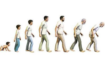 افزایش طول عمر انسان