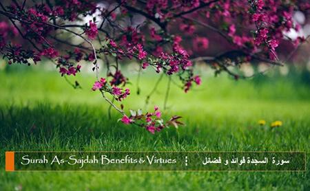 ویژگی های سوره سجده, خصوصیات سوره سجده, سوره های سجده واجب قرآن