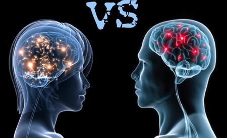 آشنایی با مغز انسان, سایز مغز مردان