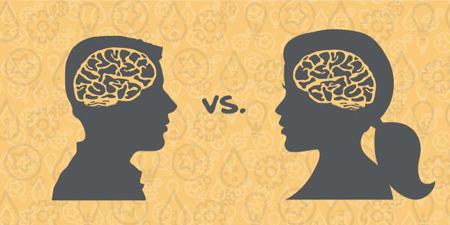 تفاوت مغز مردان و زنان,درباره مغز انسان