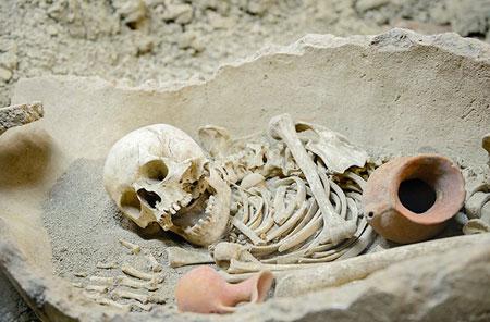 غذای انسان های غار نشین,درباره زندگی انسان های اولیه