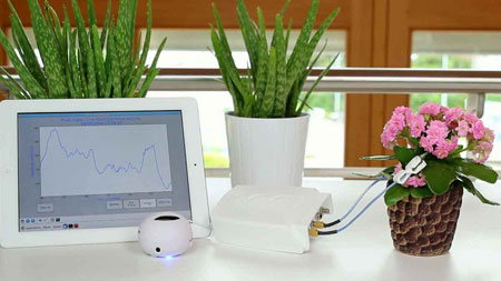 دستگاهی برای صحبت کردن گیاهان,ساخت دستگاهی برای شنیدن صدای گیاهان