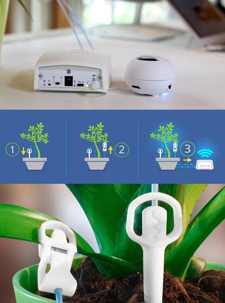 تصاویر دستگاهی برای شنیدن صدای گیاهان,دستگاه تشخیص سیگنال گیاهان