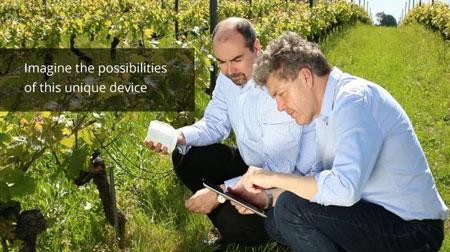 ساخت دستگاهی برای شنیدن صدای گیاهان, دلایل رشد سریع گیاهان