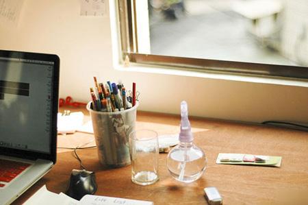 مناسب ترین گیاه دفتر کار,آماده کردن گیاه مناسب دفتر کار
