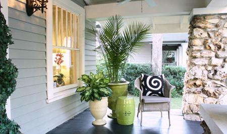 نکات لازم برای نگهداری گلها و گیاهان آپارتمانی