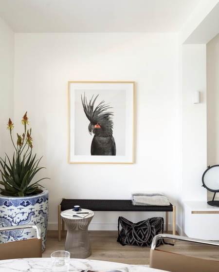 گیاهان آپارتمانی,گلدان های مناسب گیاهان آپارتمانی