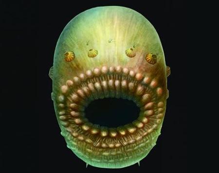 قدیمی ترین اجداد انسان ها,کشف قدیمی ترین اجداد انسان ها