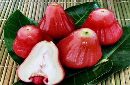 میوه های استوایی در ایران,میوه استوایی