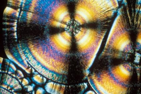 ویتامین,ویتامین چیست,تصاویر ویتامینها در زیر میکروسکوپ