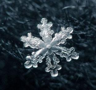 برف,مراحل تشکیل دانه برف,چگونگی تشکیل دانه برف