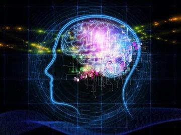 دانستنیهایی درباره مغز,آیا میدانید,توانایی های مغز