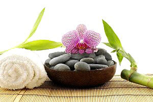 آيا ميدانيد گیاه بامبو فقط برای تزئین نیست!!