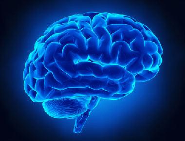 مغز,تاثیر پیری بر مغز, عملکرد مغز در زمان پیری