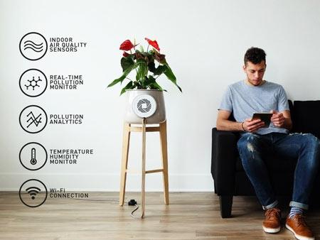 ویژگی های گلدان Clairy,راههای کاهش سموم خانه,گلدان