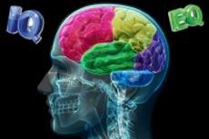 IQ,تفاوت IQ و EQ,EQ چیست,هوش هیجانی چیست