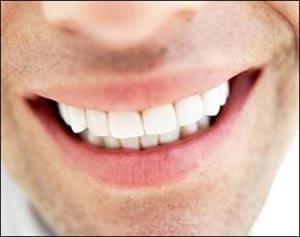 دندان,رشد دندان با سلولهای لثه,سلولهای مزانشیمی
