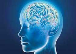 10 حقیقت عجیب درباره مغز