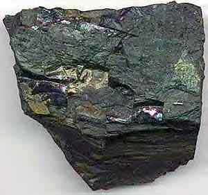 تشکیل زغال سنگ , نحوه تشکیل نفت