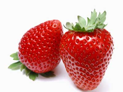 آموزش کاشت توت فرنگی,پرورش گل و گیاه