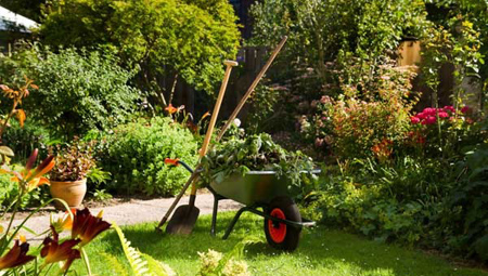 اصول نگهداری از باغچه, نکاتی برای آبیاری باغچه