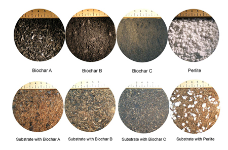 Two Physical Properties Ofdirt