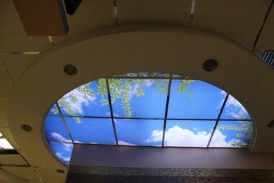 دکوراسیون,سقف دکوراتیو,دکوراسیون دفتر کار,آسمان مجازی