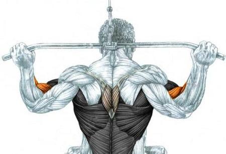 تمرین فرم دهی زیر بغل در منزل, حرکات زیر بغل در خانه با دمبل, برنامه فرم دهی زیر بغل و جلو بازو