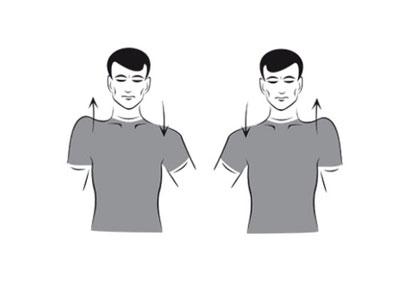 ورزش سرشانه,ورزش شانه,تقویت عضلات سرشانه