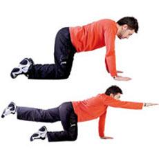 کمر درد,درمان کمردرد,ورزش برای کمردرد