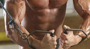 رشد عضلات,آسیب عضله,چگونگی رشد عضلات