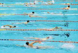 شنا,فواید شنا,ورزش شنا