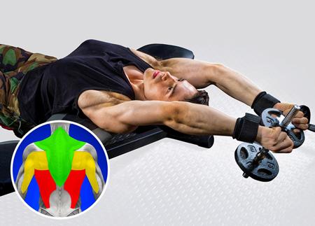 پهن کردن عضلات پشت,عضلات پشت پهن تر,عریض کردن پشت