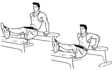 ديپ پشت بازو,حرکت ديپ,تفويت عضلات بازو