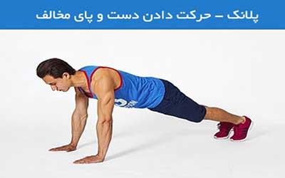 ورزش و تناسب اندام