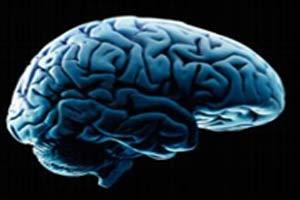 چگونه مغز را ورزش دهیم