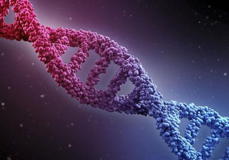 مشاوره ژنتیک قبل از ازدواج,مشاوره قبل از ازدواج,مشاوره ژنتیک