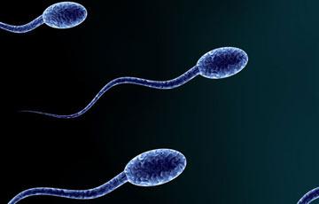 آزواسپرمی, آزواسپرمی چیست, فقدان اسپرم در مایع منی