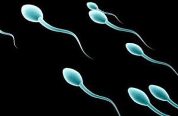 آنچه باید درباره اسپرم بدانید