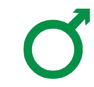 اختلال نعوظ, علت اختلال نعوظ در مردان, علل اختلال نعوظ