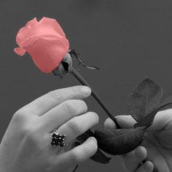 نکاتی برای دختر خانم ها قبل ازبرقراری ارتباط عاطفی