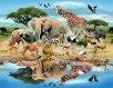 رفتار حیوانات,زبان حیوانات,نحوه سخن گفتن حیوانات,نحوه انتخاب جفت در حیوانات